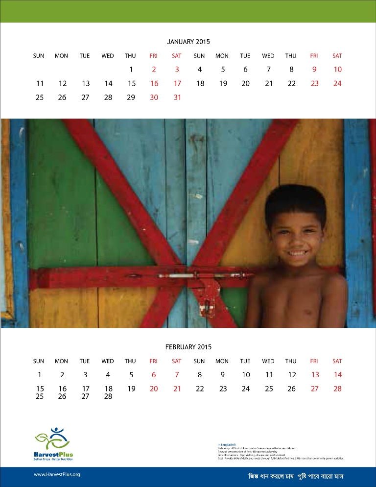 Harvestplus-wall-calendar