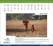 IRRI,-Harvest---Agriculture